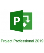 Microsoft Project Professional 2019 PL