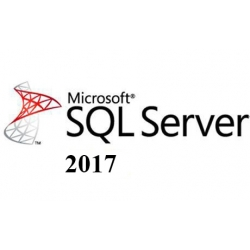 Microsoft SQL Server 2017 Standard + 100 User
